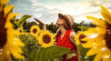 sunflower-field-2.jpg