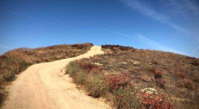 Steve-Grace-image-california-wilderness.jpg