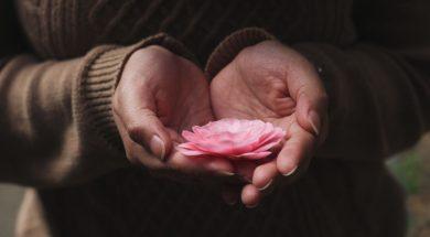 unsplash-image-flower-in-palm.jpg