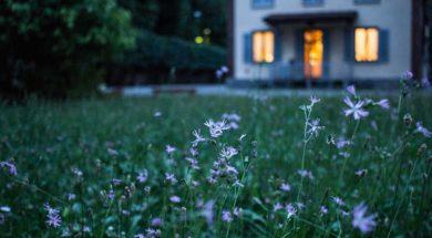 unsplash-garden.jpg
