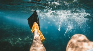 ocean-one-question-focus-your-life-1.jpg